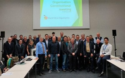 Citrus Growers' Association elects co-chairperson of newly launched World Citrus Organisation